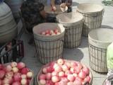 又是一年苹果收获时